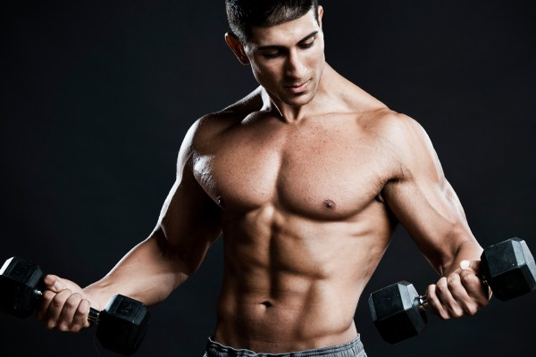 The Basics of Building Muscle